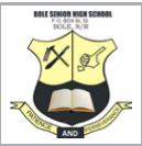Bole Senior High